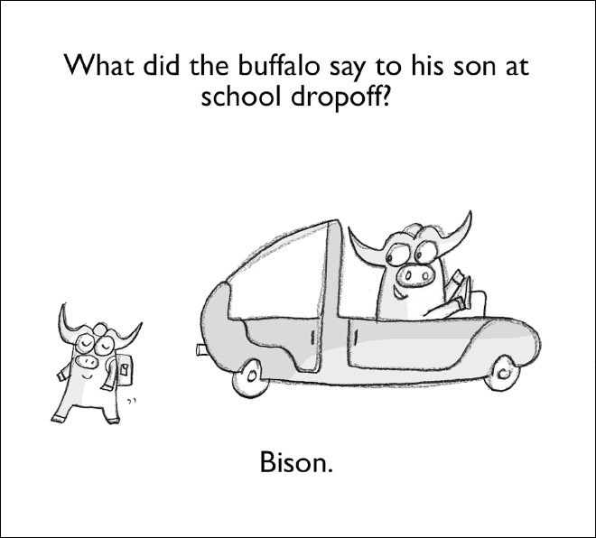 Mode of transport - What did the buffalo say to his son at school dropoff? Bison