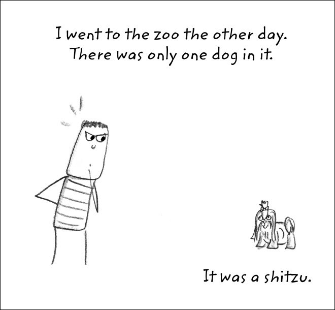 Text - I went to the zoo the other day. dog in it There was only one It was a shitzu.