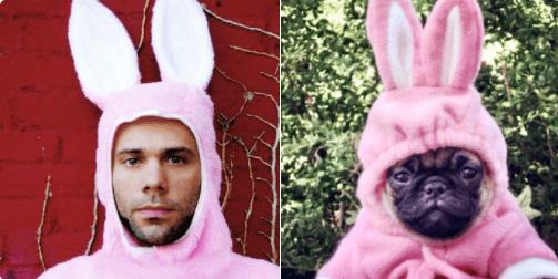doppelganger dogs - Pink