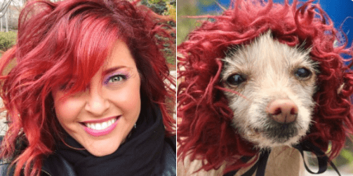 doppelganger dogs - Hair