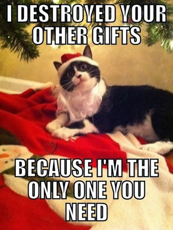 Photo caption - IDESTROVED YOUR OTHER GIFTS BECAUSE I'M THE ONLY ONE VOU NEED