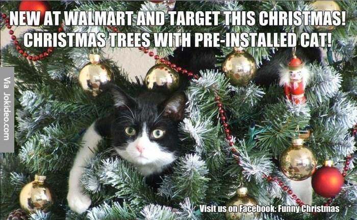 Christmas tree - NEW AT WALMARTAND TARGET THIS CHRISTMAS! CHRISTMAS TREES WITH PRE-INSTALLED CAT! Visit us on Facebook: Funny Christrmas Via Jokideo.com