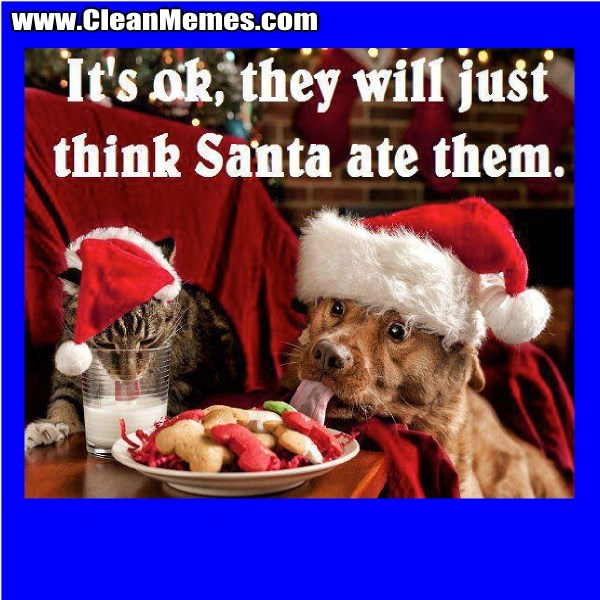 Photo caption - www.CleanMemes.com It's ok they will jusť think Santa ate them.