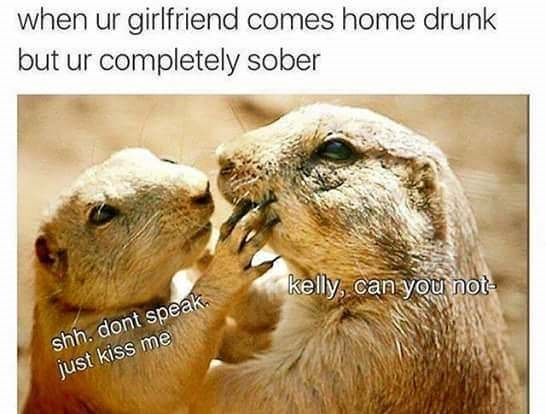 Gopher - when ur girlfriend comes home drunk but ur completely sober kelly, can you not shh. dont speak just kiss me