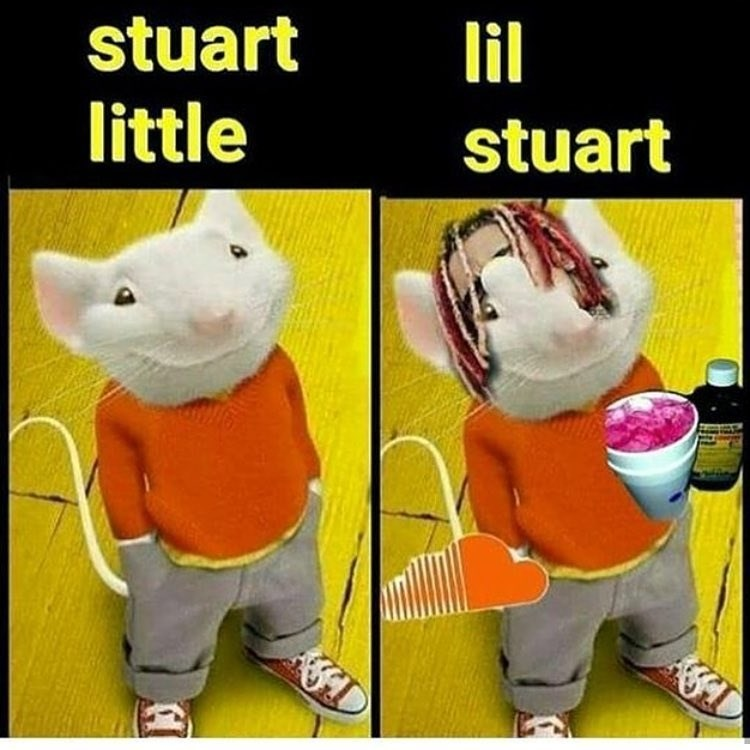 Funny meme about stuart little.