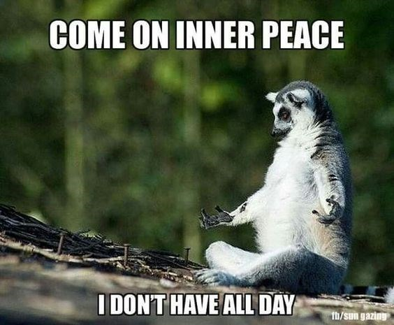 Anxiety Lemur wednesday meme about patience and inner piece meditation