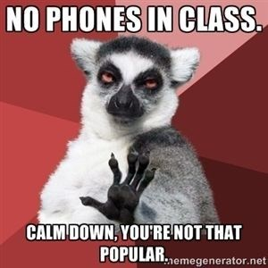 Wednesday lemur advice animal of no phones in class but you are not that popular anyway