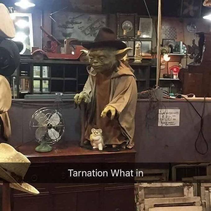 Yoda - DOS $50 Tarnation What in