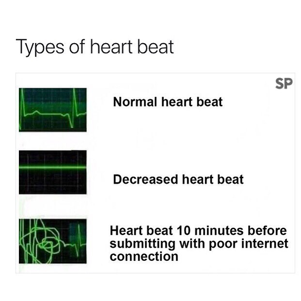 meme - Text - Types of heart beat SP Normal heart beat Decreased heart beat Heart beat 10 minutes before submitting with poor internet connection