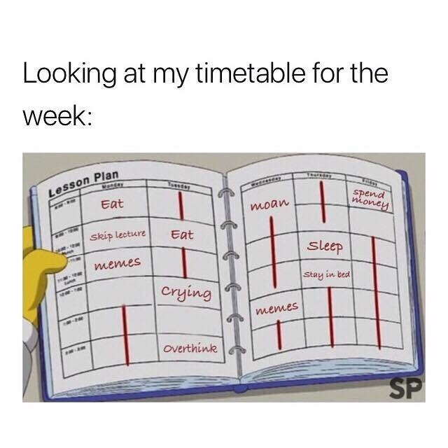 meme - Text - Looking at my timetable for the week: Lesson Plan Eat Tussd Wortay spend money - moan skip Lecture Eat sleep memes Stay in bed Crying memes Overthink SP