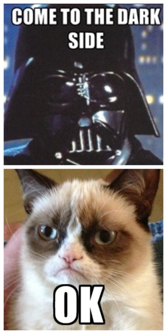 Cat - COME TO THE DARK SIDE OK