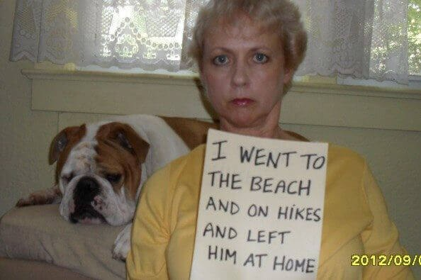 human shaming - Dog - I WENT TO THE BEACH AND ON HIKES AND LEFT 2012/09/ HIM AT HOME