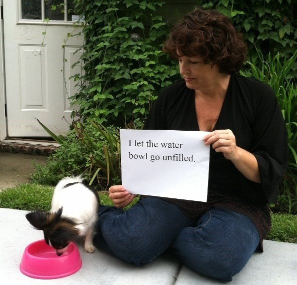 human shaming - Sitting - I let the water bowl go unfilled