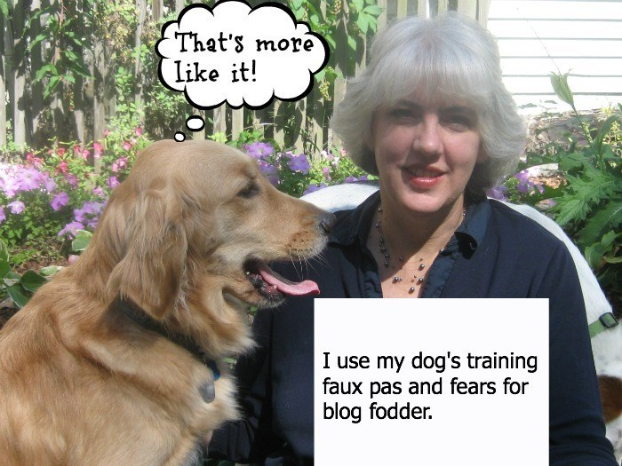 human shaming - Dog - That's more Like it! I use my dog's training faux pas and fears for blog fodder.