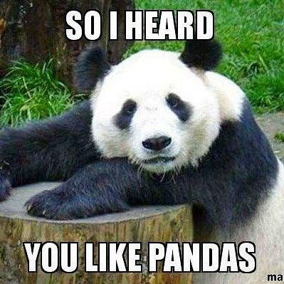 Panda - SOIHEARD YOU LIKE PANDAS ma