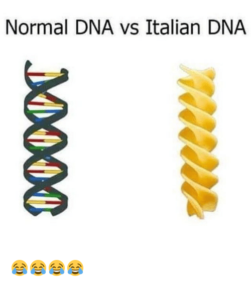 meme about Italians DNA being made of pasta