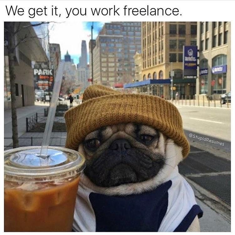 work meme - Pug - We get it, you work freelance. PARK @StupidResumes