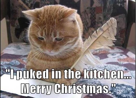 Cat - puked in the kitchen.. Merry Christmas