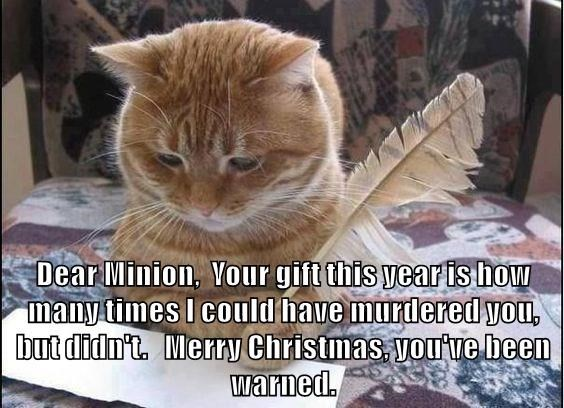 Cat - Dear Minion, Vour gift this yearis how many times I could have murdered you, but didn't. Merry Christmas, yove been warned.