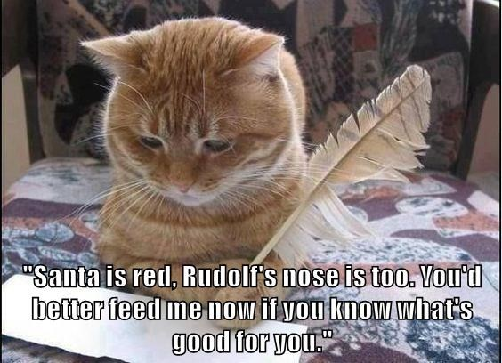 Cat - Santa is red, Rudolf's nose is too. Vou'd better feed me now if you knowwhat's good for you