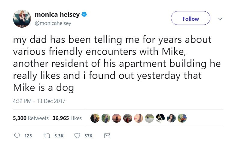 Text - monica heisey Follow @monicaheisey my dad has been telling me for years about various friendly encounters with Mike, another resident of his apartment building he really likes and i found out yesterday that Mike is a dog 4:32 PM - 13 Dec 2017 5,300 Retweets 36,965 Likes L5.3K 123 37K