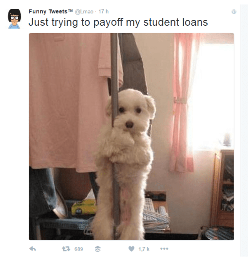 Dog - Funny Tweets TM @Lmao- 17 h Just trying to payoff my student loans t3 689 1,7 k