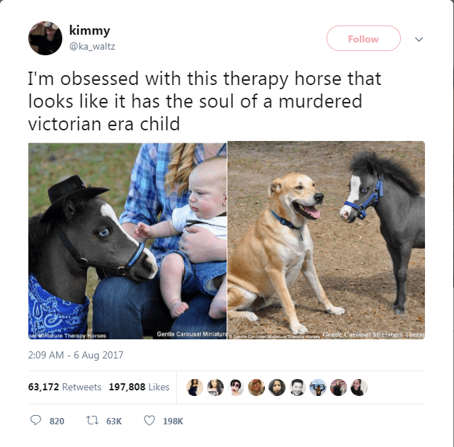 Dog - kimmy Follow @ka_waltz I'm obsessed with this therapy horse that looks like it has the soul of a murdered victorian era child Gentle Carousel Miniaturam eMihiature Therapy Horses Horses Centle Carousel Mitisre Therap Garu 2:09 AM - 6 Aug 2017 63,172 Retweets 197,808 Likes t63K 820 198K