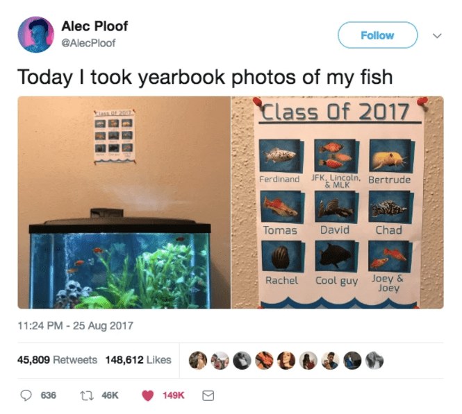 Product - Alec Ploof Follow @AlecPloof Today I took yearbook photos of my fish Class Of 2017 Ferdinand JFK, Lincoln, Bertrude & MLK David Chad Tomas Cool guy Joey& Joey Rachel 11:24 PM -25 Aug 2017 45,809 Retweets 148,612 Likes t 46K 636 149K