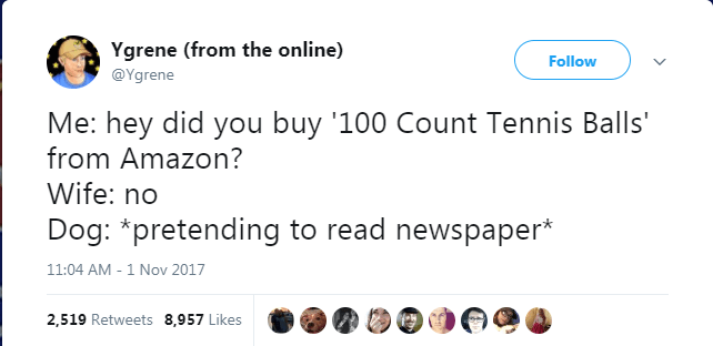 Text - Ygrene (from the online) @Ygrene Follow Me: hey did you buy '100 Count Tennis Balls' from Amazon? Wife: no Dog: *pretending to read newspaper* 11:04 AM - 1 Nov 2017 2,519 Retweets 8,957 Likes