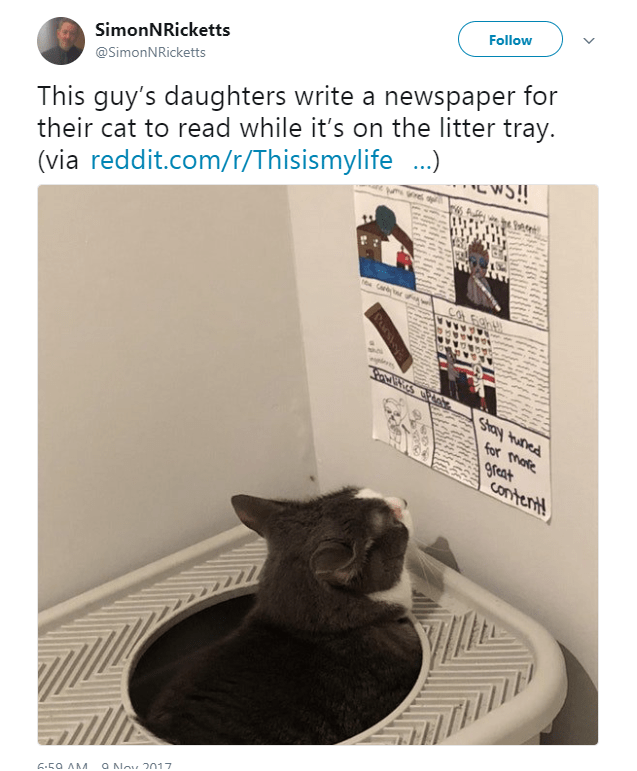 Cat - Follow SimonNRicketts This guy's daughters write a newspaper for their cat to read while it's on the litter tray. (via reddit.com/r/Thisismylife) @SimonNRicketts ege Car COL6ah plevs SPAROS for mare Pauny Aaus great contert! 9 Nov 2017 6.59 AM