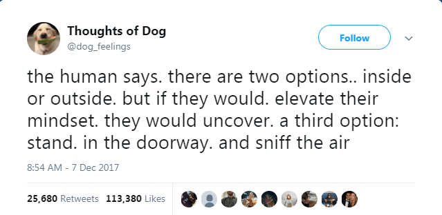 Text - Thoughts of Dog Follow @dog_feelings the human says. there are two options.. inside or outside. but if they would. elevate their mindset. they would uncover. a third option: stand. in the doorway. and sniff the air 8:54 AM -7 Dec 2017 25,680 Retweets 113,380 Likes