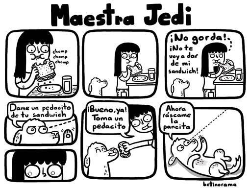 perros son los verdaderos maestros jedi