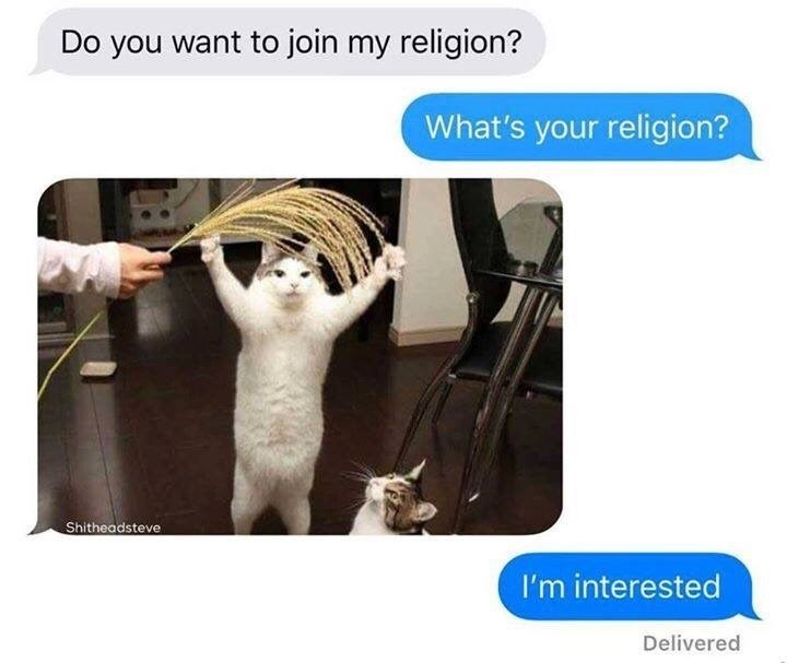 Funny meme about a religion that worships cats.