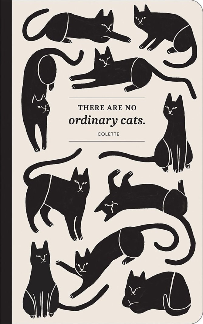 Black cat - THERE ARE NO ordinary cats. COLETTE
