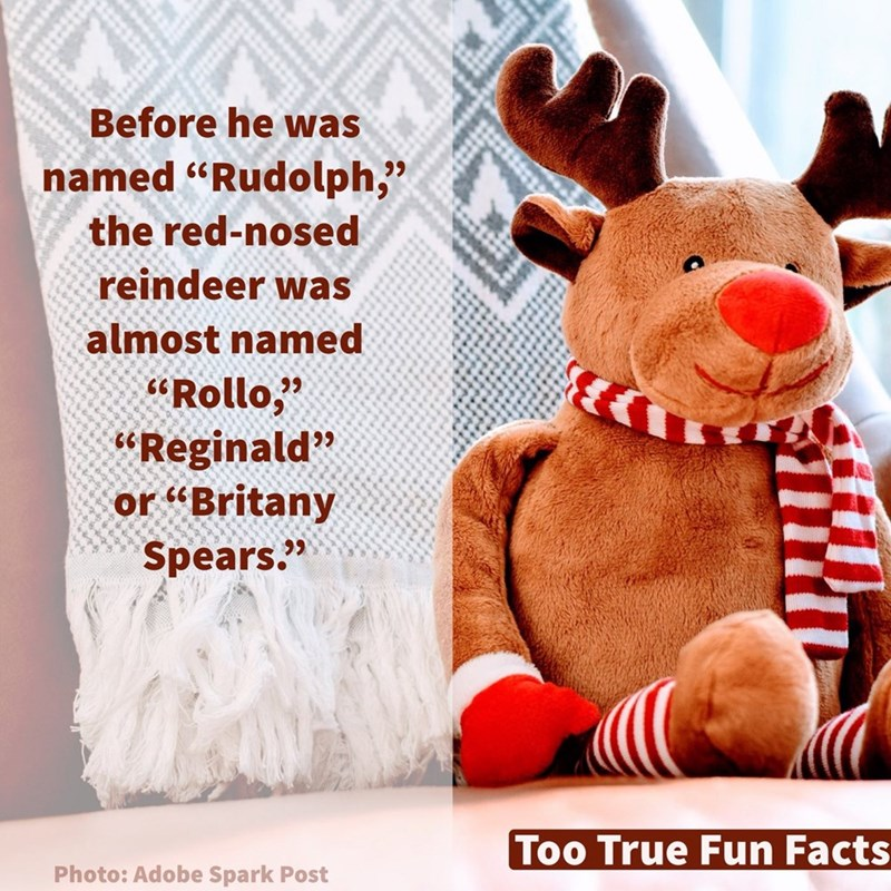 """Stuffed toy - Before he was named """"Rudolph,"""" the red-nosed reindeer was almost named """"Rollo, """"Reginald"""" or """"Britany Spears."""" Too True Fun Facts Photo: Adobe Spark Post"""