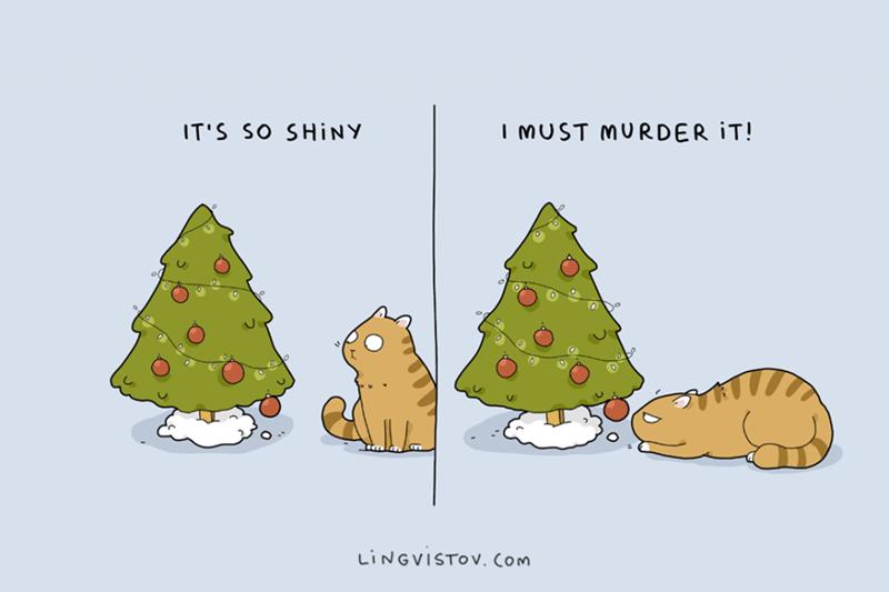 oregon pine - IMUST MURDER IT! IT'S SO SHINY LINGVISTOV. Com