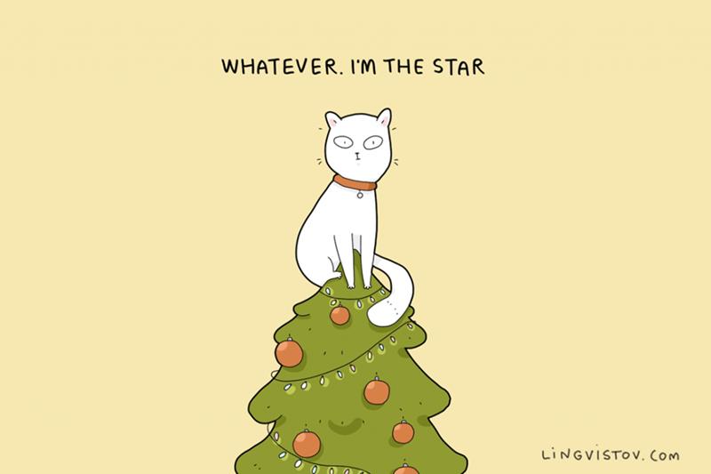 Cartoon - WHATEVER. I'M THE STAR LINGVISTOV. Com