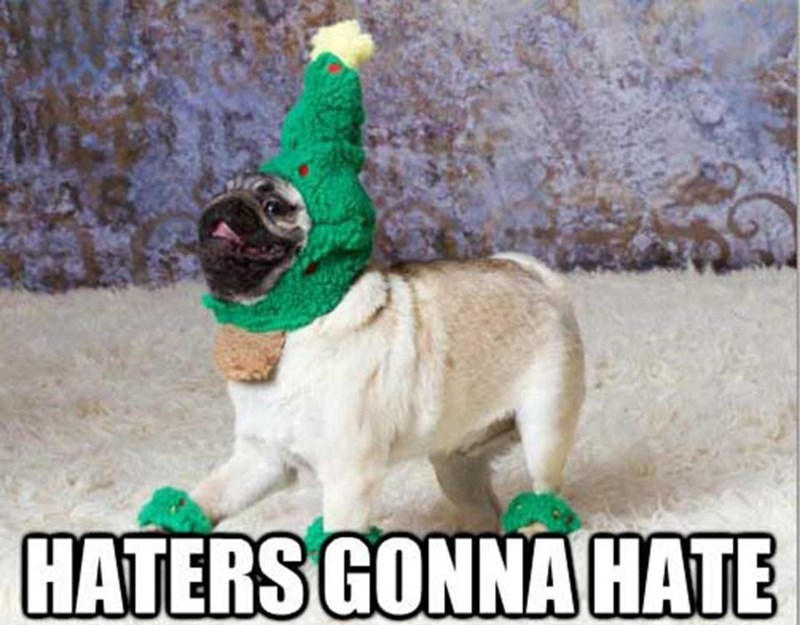 meme - Dog - HATERS GONNA HATE