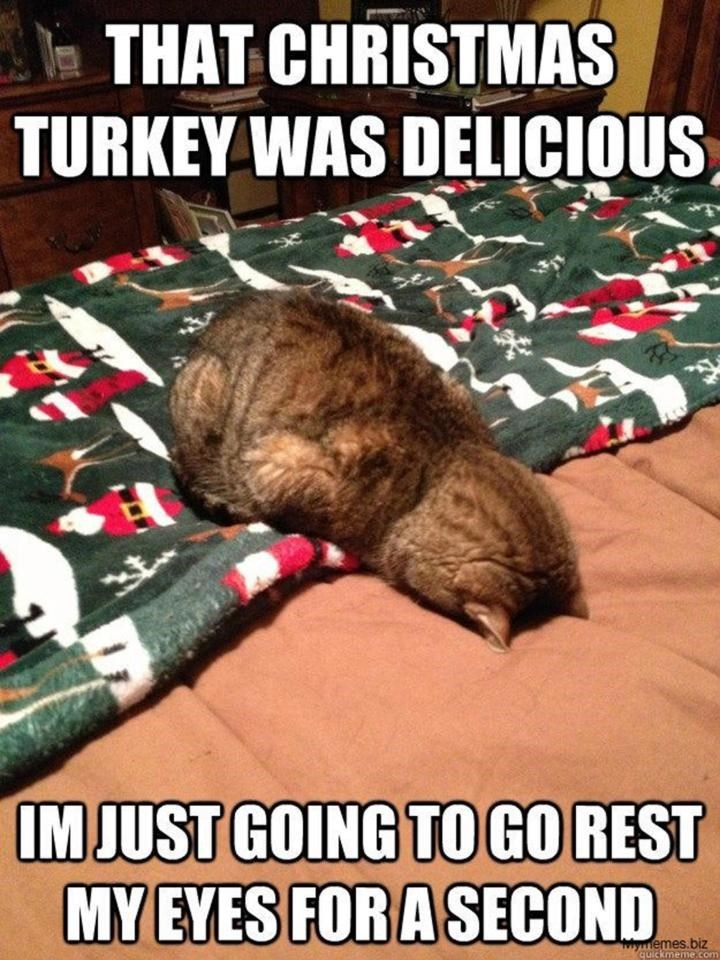 meme - Internet meme - THAT CHRISTMAS TURKEY WAS DELICIOUS IM JUST GOING TO GO REST MY EYES FOR A SECOND emes.biz quickmemecom