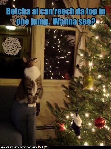 meme - Christmas - Betcha aicanreechda topin one jump. Wanna see? CANHASCHEE2EURGER cOM