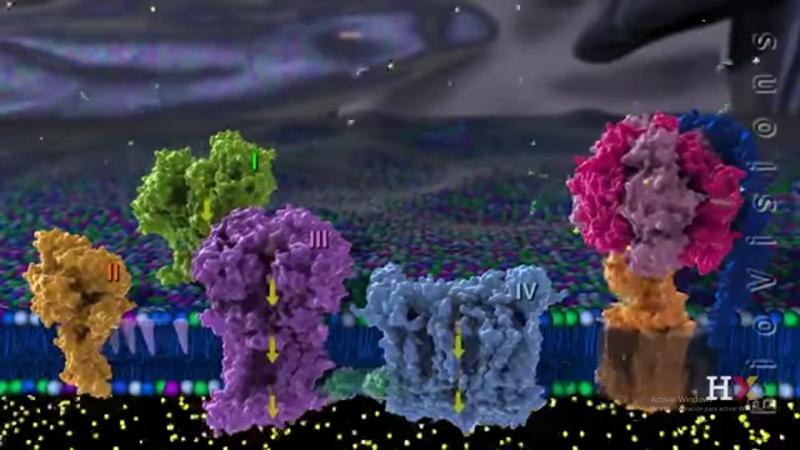spike applejack twilight sparkle pinkie pie princess luna science omar ali rainbow dash - 9107403008