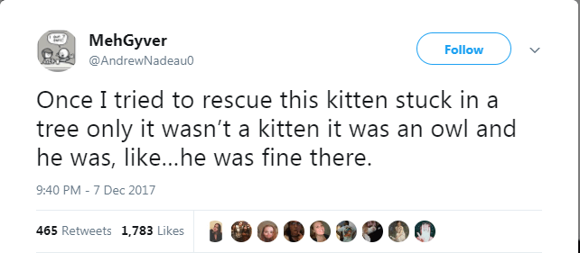cat twitter - Text - MehGyver Follow @AndrewNadeau0 Once I tried to rescue this kitten stuck in a tree only it wasn't a kitten it was an owl and he was, like...he was fine there. 9:40 PM - 7 Dec 2017 465 Retweets 1,783 Likes