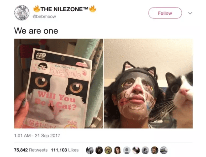 cat twitter - Face - Follow THE NILEZONETM @birbmeow We are one ART MASK わんにゃんアートフスク Pure Smile Will You Be A Cat? 1:01 AM-21 Sep 2017 75,842 Retweets 111,103 Likes