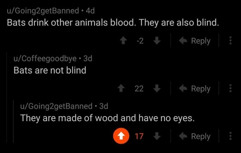 trolling - Text - u/Going2getBanned · 4d Bats drink other animals blood. They are also blind. -2 Reply u/Coffeegoodbye •3d Bats are not blind 1 22 Reply u/Going2getBanned · 3d They are made of wood and have no eyes. 17 Reply