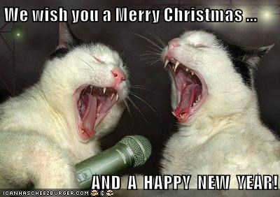 Funny Christmas Memes For Friends : We wish you a merry christmas and a happy new year! lolcats