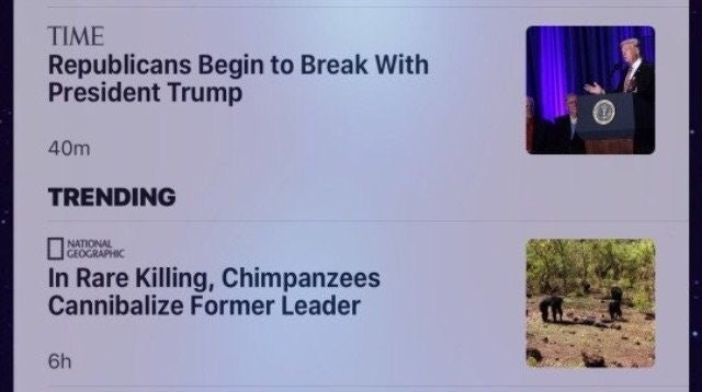 headline about Trump losing support from Republicans above headline about chimpanzees killing their leader