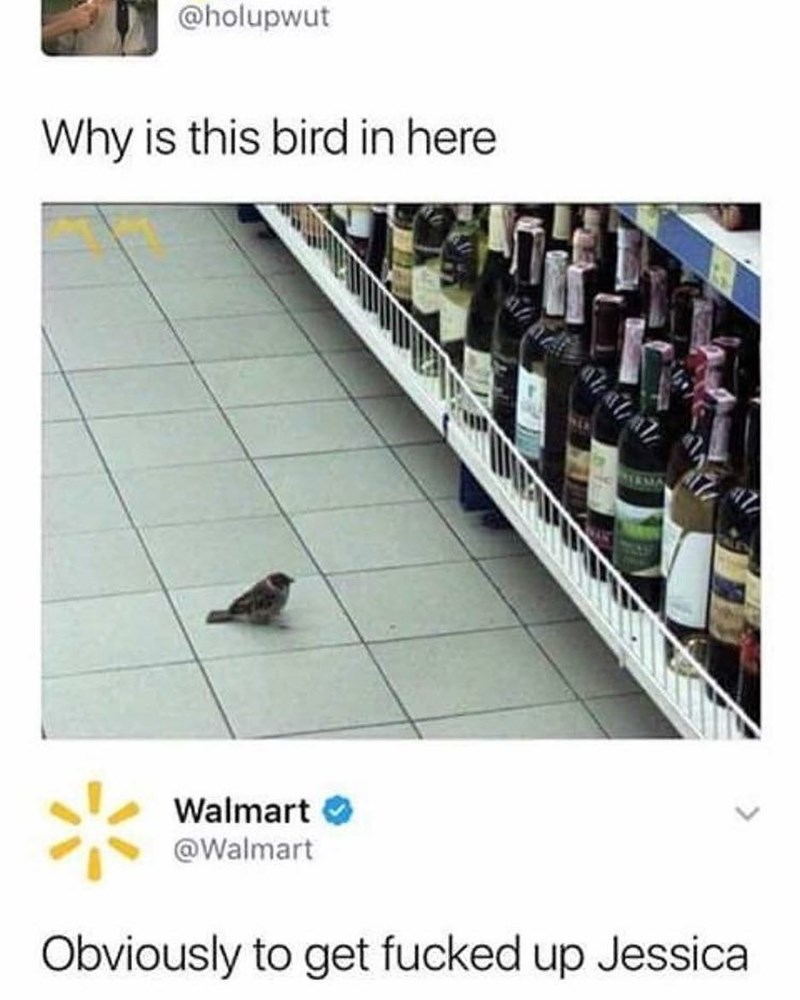Funny meme about bird shopping for alcohol in Walmart.