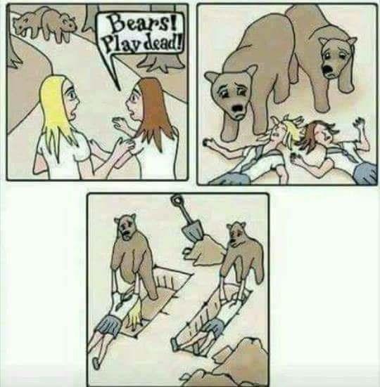 Cartoon - Bears! Plavdead!