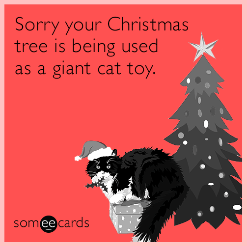 Greeting card - Sorry your Christmas tree is being used giant cat toy. as a somee cards