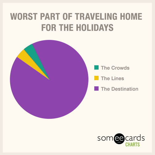 Text - WORST PART OF TRAVELING HOME FOR THE HOLIDAYS The Crowds The Lines The Destination someecards CHARTS
